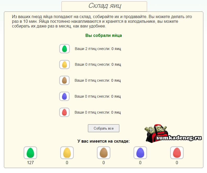 Сбор и продажа яиц